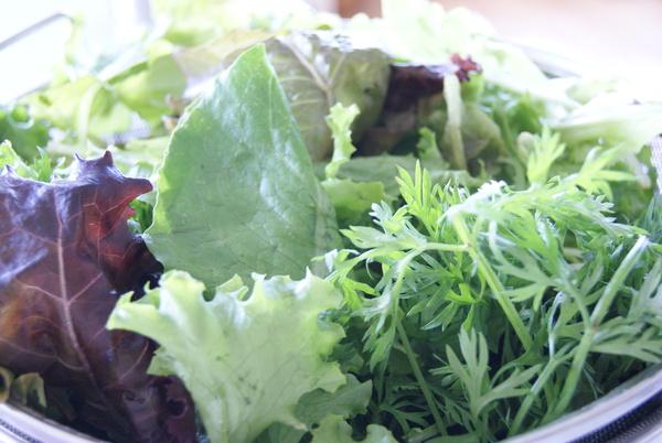 初夏の自家製野菜ランチ_c0125702_101785.jpg