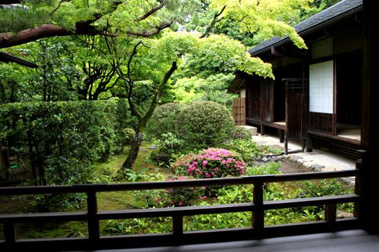 大徳寺 高桐院_e0048413_22173855.jpg