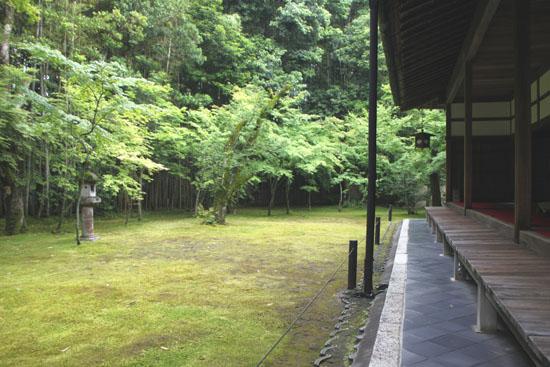 大徳寺 高桐院_e0048413_22183037.jpg