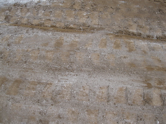 「土壌改良」☆_a0125419_1757313.jpg