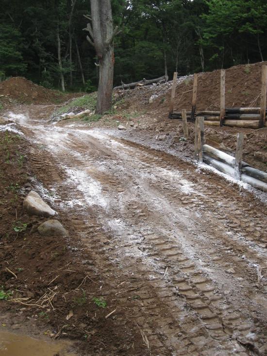 「土壌改良」☆_a0125419_1803195.jpg