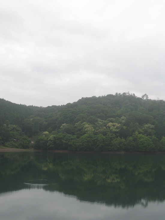 「果実の植林」☆_a0125419_189693.jpg