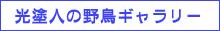f0160440_1454094.jpg