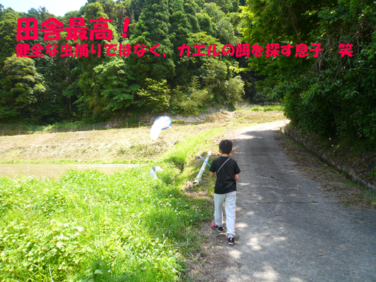 f0183484_9385283.jpg