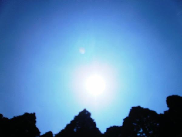 「ヴィーナスのお散歩」の日の空・・Ⅱ_a0174458_8342485.jpg