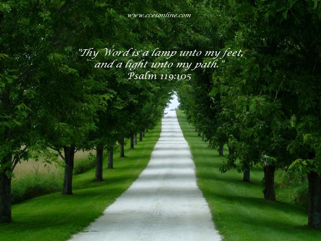 6月12日詩篇38‐41章『正しい悔い改めと回復の希望』_d0155777_0145336.jpg