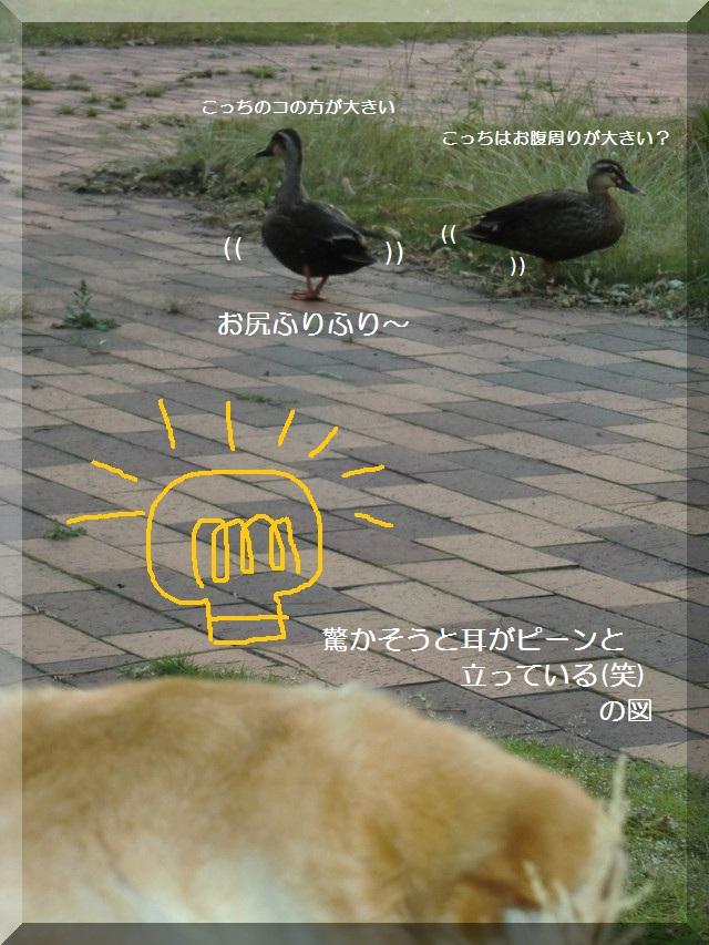 d0243802_1724857.jpg