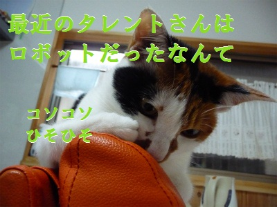 e0072606_1427366.jpg