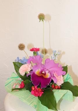 フェアー&会議のお花たち_d0227610_1991852.jpg
