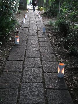 熊本水遺産めぐり~釣耕園の蛍~_b0228113_018377.jpg