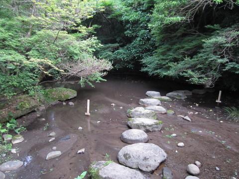 熊本水遺産めぐり~釣耕園の蛍~_b0228113_082271.jpg