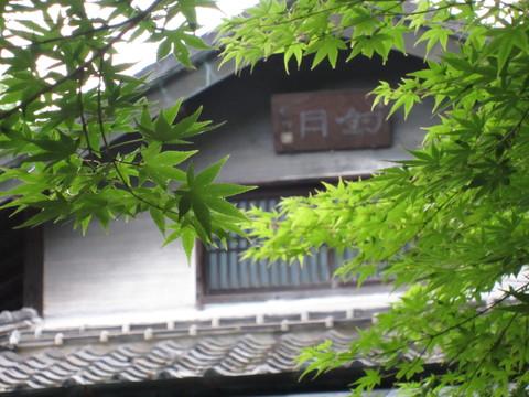 熊本水遺産めぐり~釣耕園の蛍~_b0228113_084210.jpg