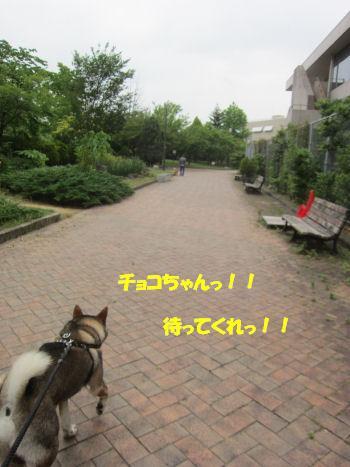 f0143123_19553869.jpg