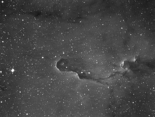 ケフェウス座散光星雲IC1396_c0061727_8292481.jpg