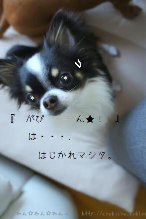 b0112758_19521135.jpg