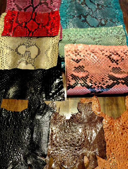 EXOTICLEATHER_a0277360_1556450.jpg