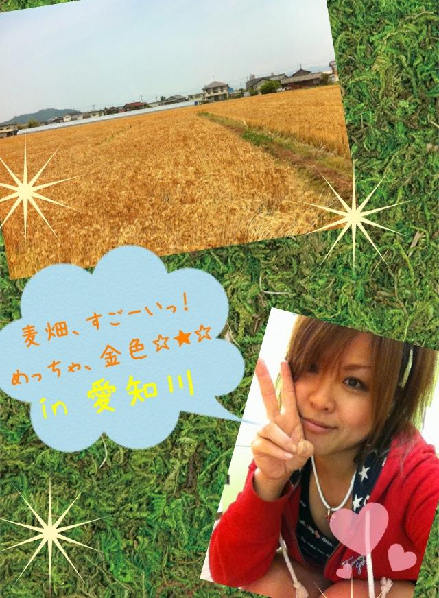 金色〜!_d0162684_17422012.jpg