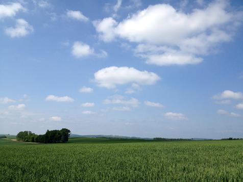 天気の良い日はお山へ行こう♪_f0096216_16453018.jpg