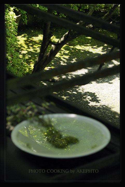 若葉の季節Ⅱ_e0127416_23304922.jpg