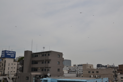 上空ヘリだらけ_d0100125_105215100.jpg