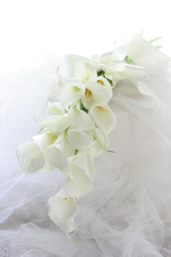 アームブーケ カラーの花を束ねて_a0042928_2255340.jpg