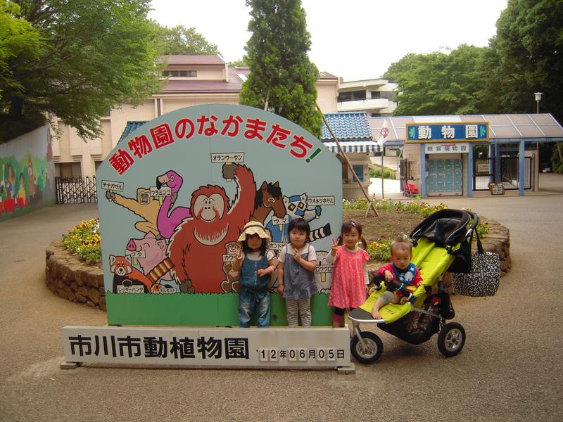 市川動植物園  2012.6.5_e0223771_954435.jpg