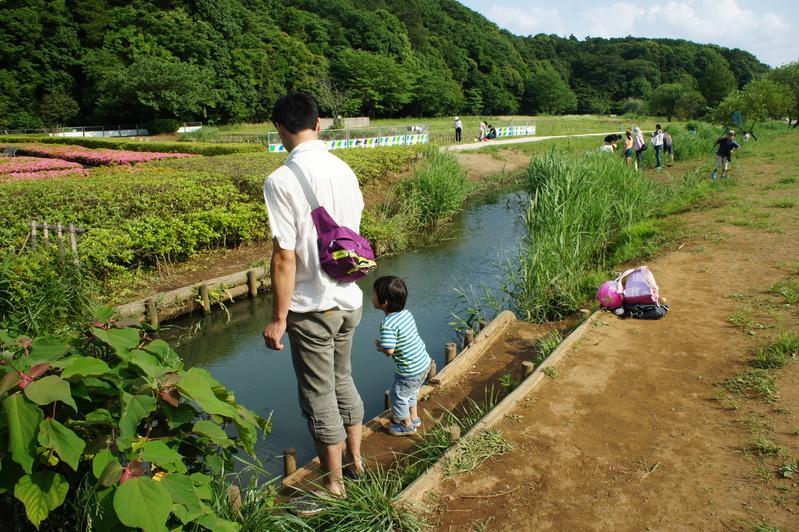 ザリガニ釣り  2012.6.3_e0223771_973976.jpg
