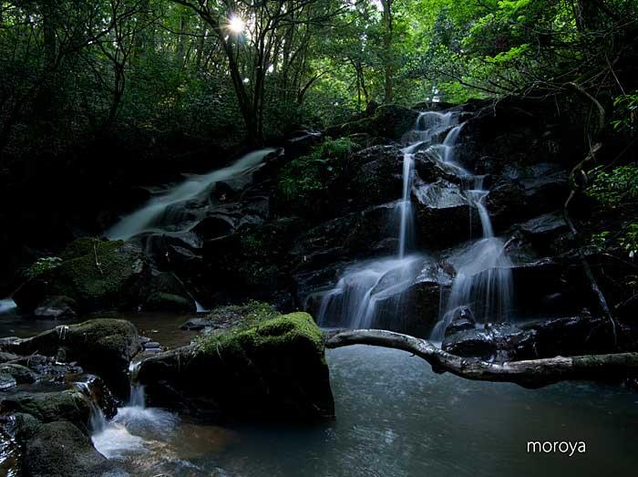 初夏の滝_c0085877_9182553.jpg