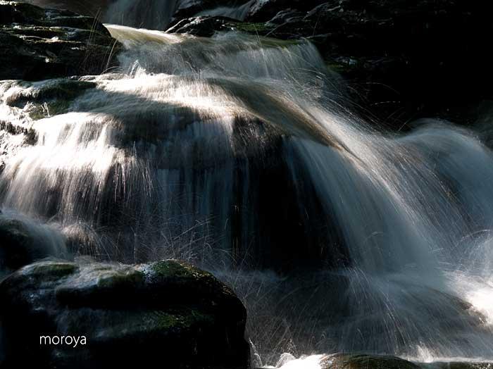 初夏の滝_c0085877_9185391.jpg