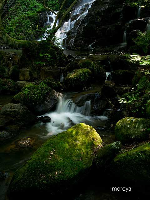 初夏の滝_c0085877_9192963.jpg