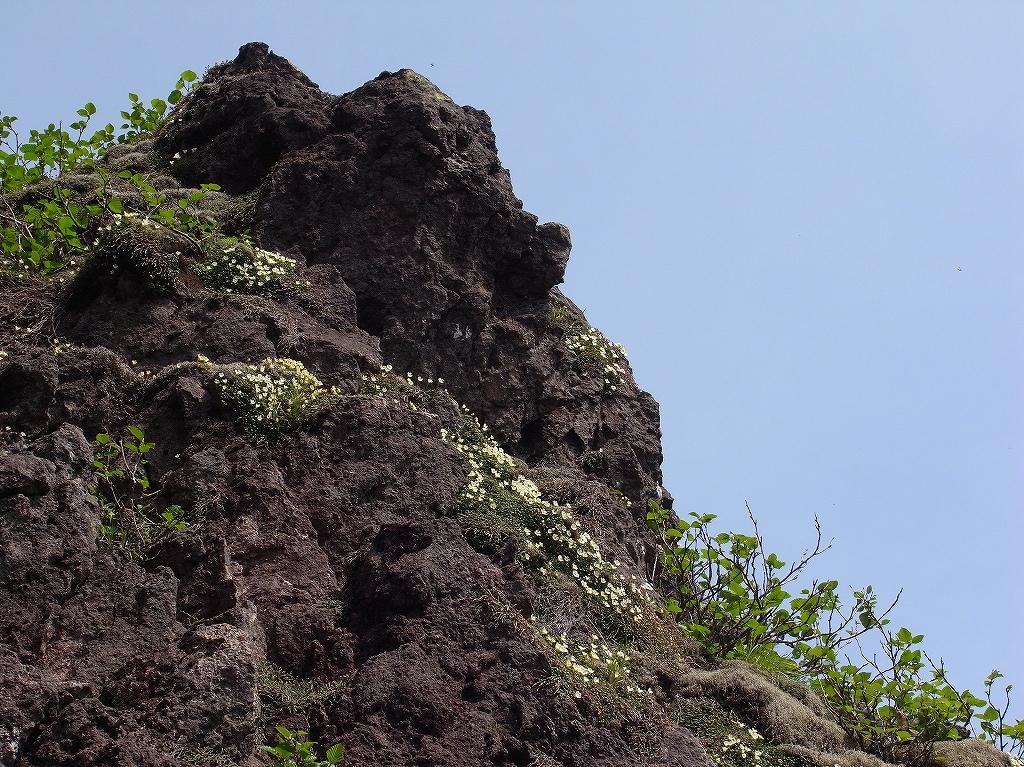 6月15日、恵庭岳体力測定登山-その1-_f0138096_18521736.jpg