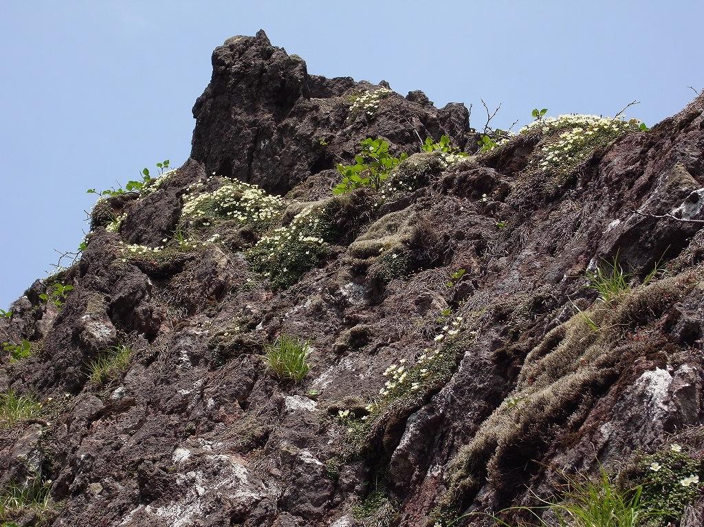 6月15日、恵庭岳体力測定登山-その1-_f0138096_18523389.jpg