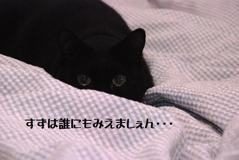 b0173101_0404689.jpg
