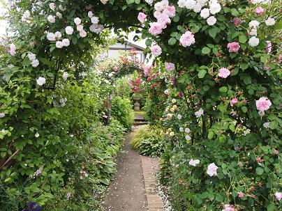 2012年茨城のお庭 その15_c0167112_18163644.jpg
