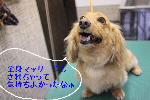 b0130018_182736.jpg