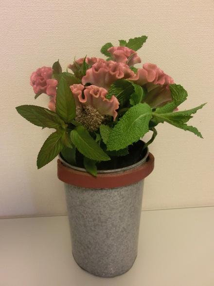 お花に囲まれて・・・♪  6/16①_b0247223_1543387.jpg