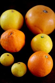 お弁当にいれる果物の冷凍保存 3かんきつ類の冷凍保存_b0048834_952558.jpg