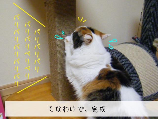 f0008935_20751.jpg