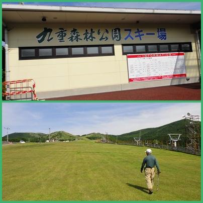 九重森林公園のオオヤマレンゲ_e0164643_1055181.jpg