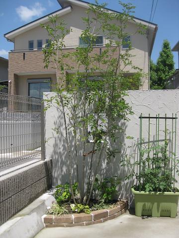 植栽がはいると素敵度アップ~☆_e0128446_1531184.jpg