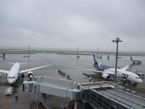 ANA B787-8 羽田空港_d0202264_2315611.jpg