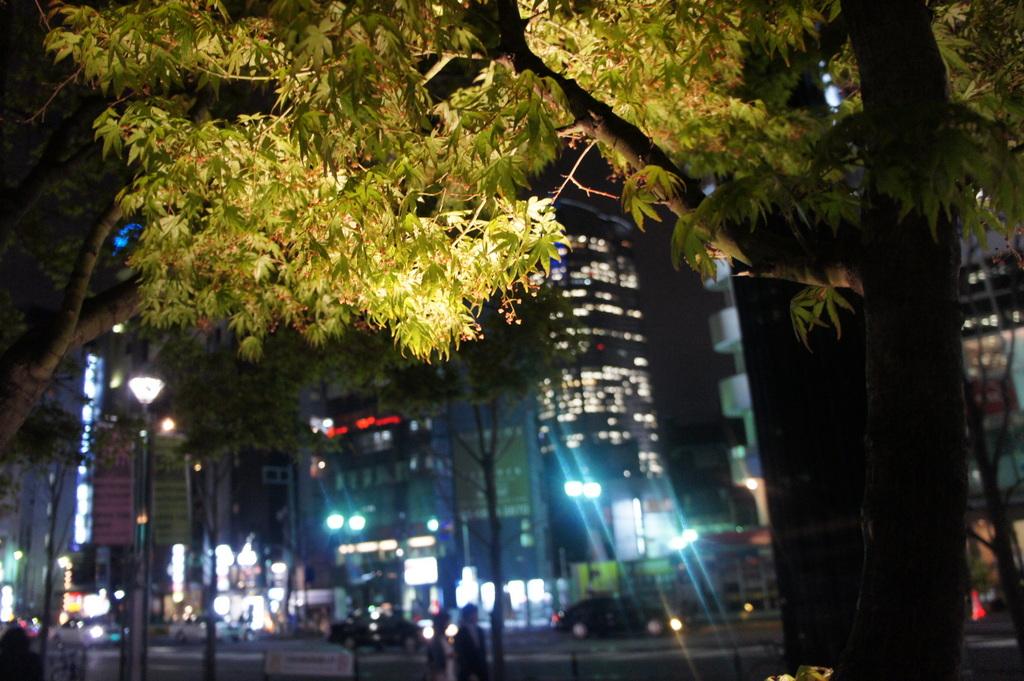 JapanDiary@BerlinVol.11 ノブ君と日本で初めてのお寿司!_c0180686_19362875.jpg