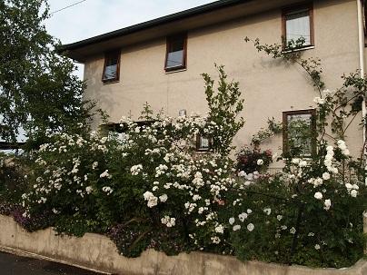 2012年茨城のお庭 その16_c0167112_749947.jpg