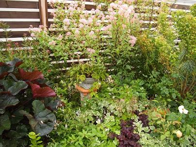 2012年茨城のお庭 その16_c0167112_753872.jpg