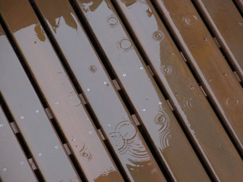 久々の本格的降雨_c0025115_22502285.jpg