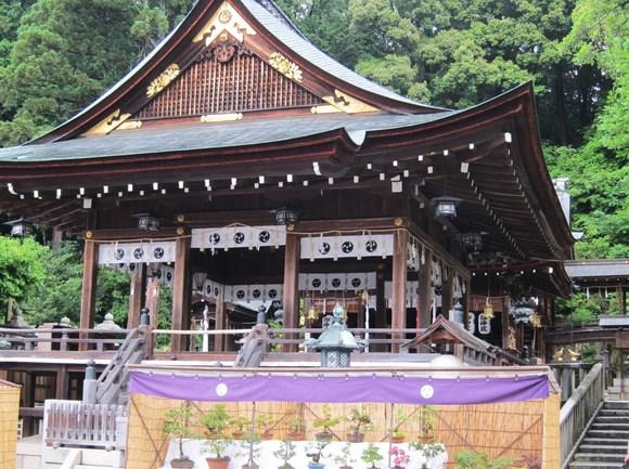 近江八幡_c0246656_1585064.jpg
