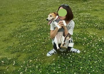 緑萌ゆ_d0143957_15132993.jpg