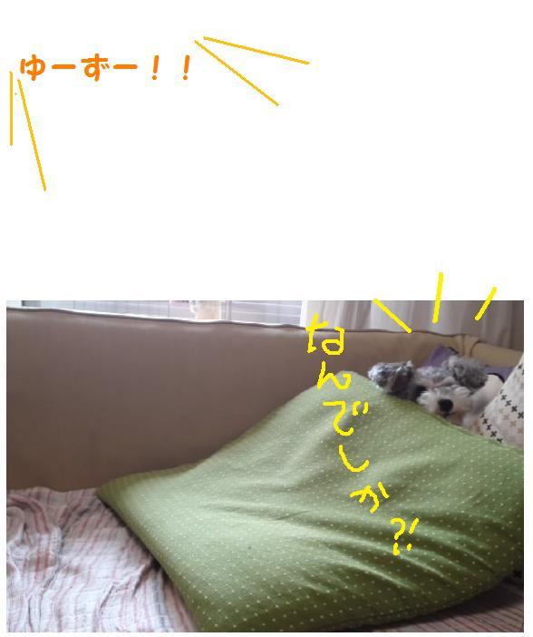 a0230864_16543032.jpg