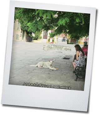 ギリシャのいちばん熱い日かも!_f0037264_836173.jpg