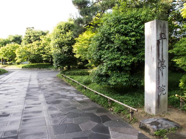 修学旅行【奈良・京都 第3・4弾】_c0180881_2065449.jpg